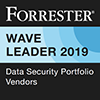 e com security solutions -_forrester_leader